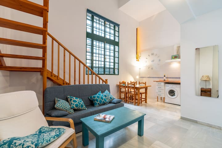 Nice duplex apartment in the historical center of Sevilla