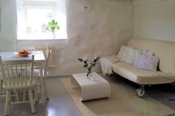 Apartment in charming villa