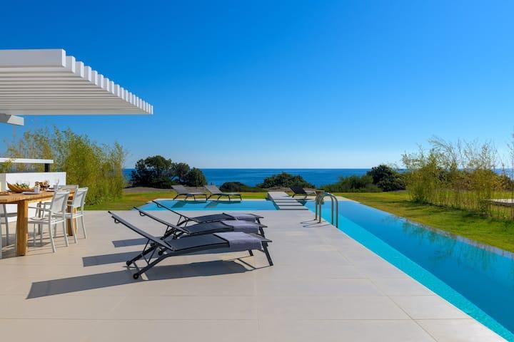 Great Albatross Beach Front  Villa