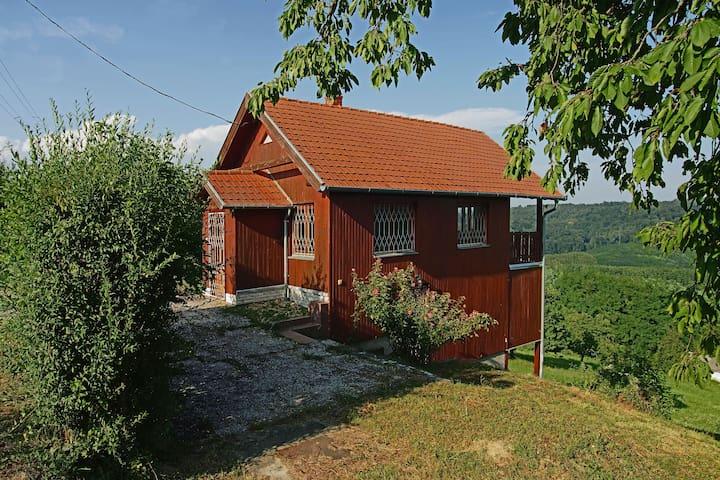 Neues Holzhaus auf einem Weinberg