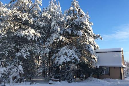 Домик в лесу деревенский - Idritsa