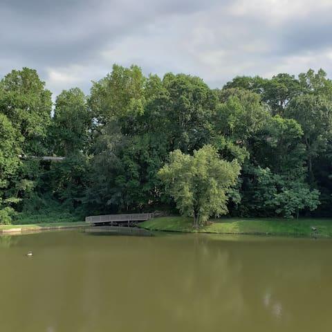 Peaceful Lakeside Retreat Near SunTrust