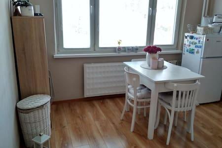 Nice Sunny 1 bedroom  flat   ❤️