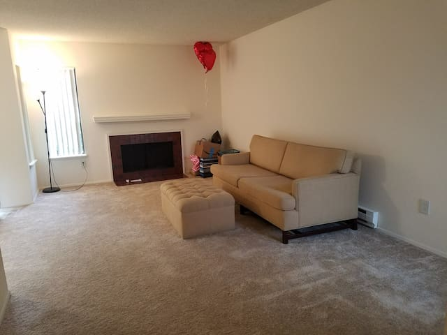 Almost empty, single bed Apt in Bellevue / Redmond - Bellevue - Apartment