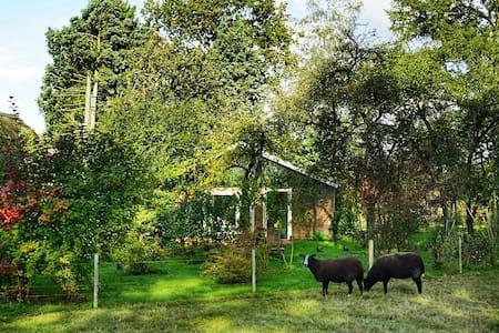 Vrijstaand huisje met veel groen, rust en privacy.