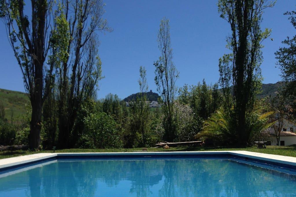 8x10 meter Pool with view to Zahara de la Sierra