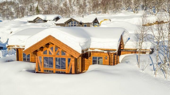 Luxury log cabin with annex, Hodlekve