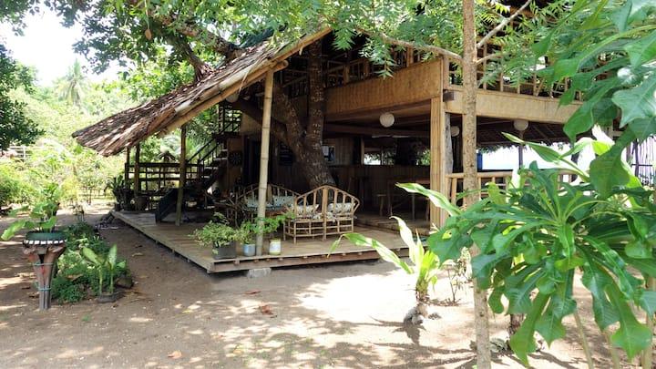 Casa Felicidad Beach Cottage 3
