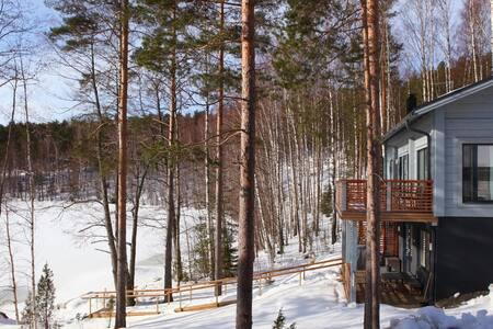 Kiuasniemi - Inspired by Nature - Villa Paapuuri - Padasjoki - Villa