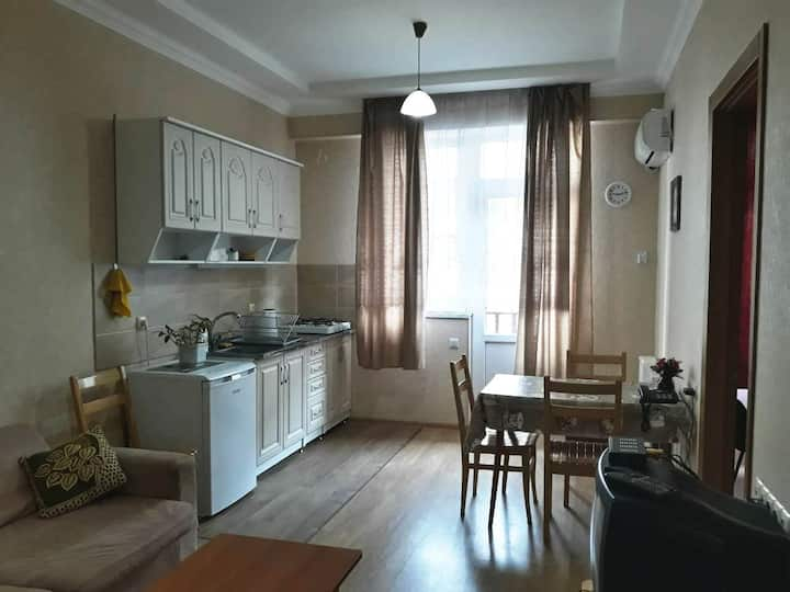 Nice apartment in Tbilisi green area