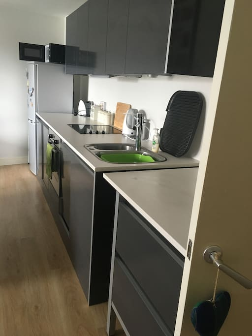 high gloss grey kitchen with dishwasher and washer/dryer
