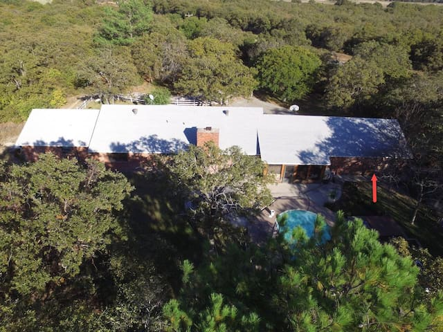 Country Efficiency on 73 Wooded Acres with Pond