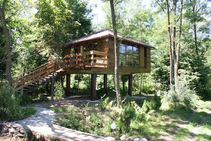 Transylvanian treehouse near Sibiu (free bikes)