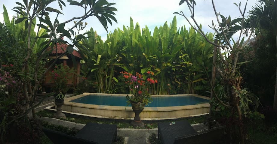 UBUD private house with pool #D'ViVi 1
