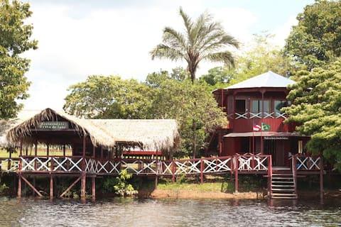 Vista do Lago Jungle Lodge - Bangalô Fé