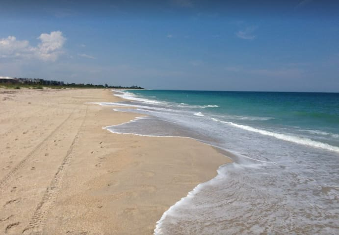 Entire Oceanfront Home on the Best Beach in Vero