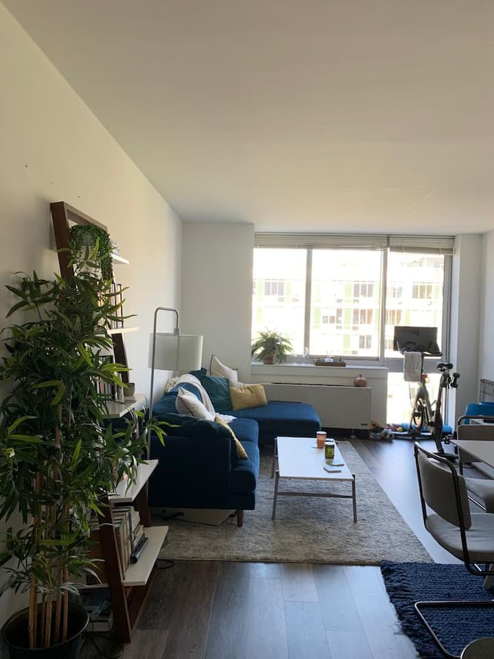 East Village/Lower East Side/Soho luxury apartment