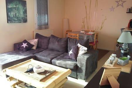 Appartement 50 m2 La Roche Sur Yon - La Roche-sur-Yon