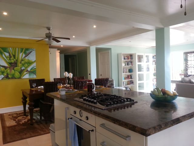 Beautiful Mountain top home - Mount Fortune - Apartment
