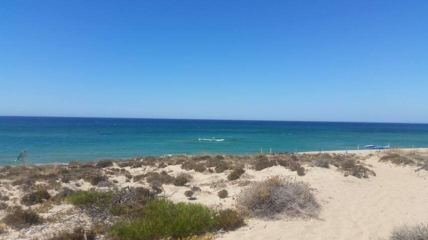 Casetta in Sardegna 30mt dal mare, con  giardino