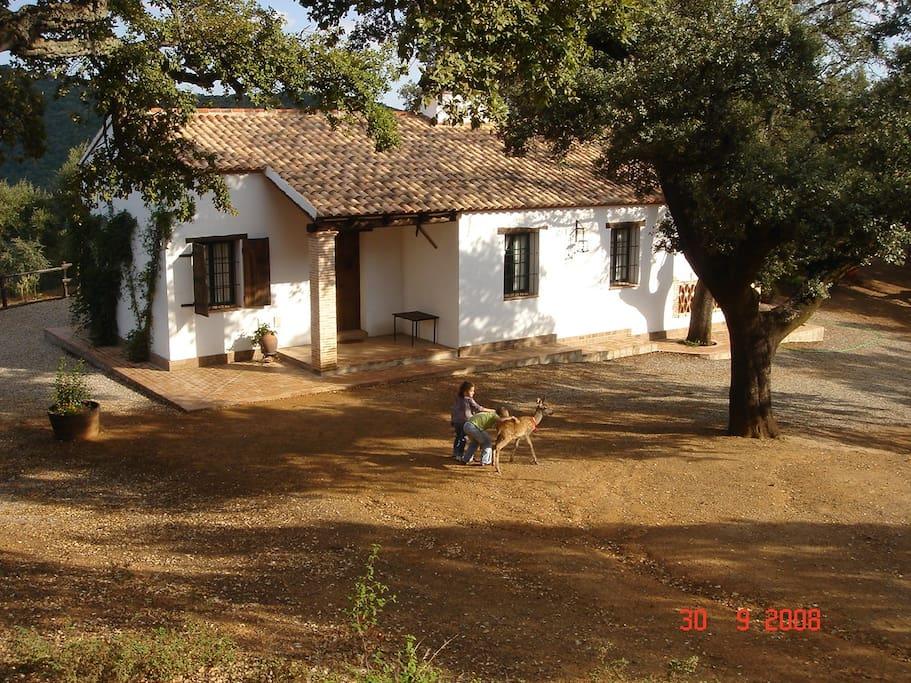 Casa rural los bogantes houses for rent in cazalla de la for Casa rural jaraiz de la vera