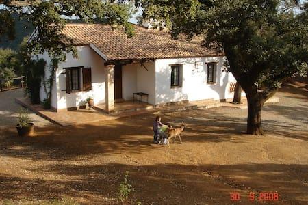 Casa Rural LOS BOGANTES - Cazalla de la Sierra - Hus