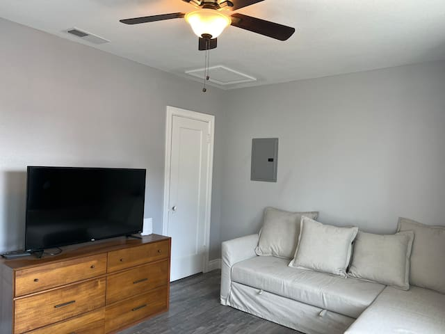 Loving room with pull out sofa