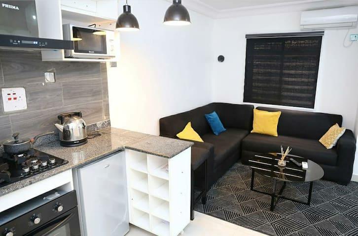 Luxurious 1 bedroom flat in ikoyi..