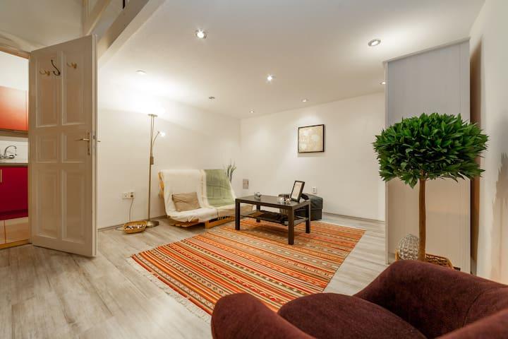 Insider's flat at Bródy street