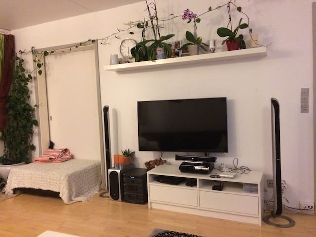 Spacious Apartment close to Cph - Brøndby Strand - Квартира