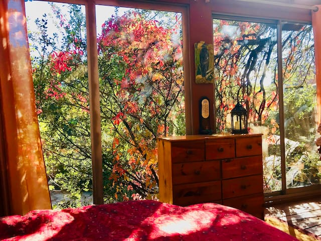 "Autumn view from inside the Treehouse Bedroom. If this is booked, also see our popular ""Spectacularly Wild CaveCastle"" and ""Gorgeous Granite Dells Exquisite Majestic Suite"" AirBnb listings next door, also at Heaven on Earth Retreat."