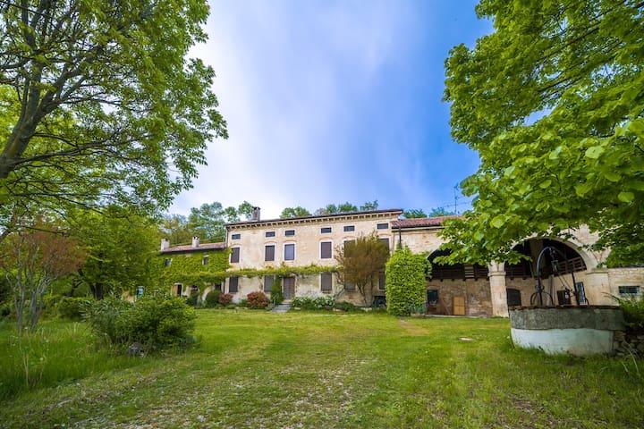 Tenuta Gli Olmi - Casolare XVIII sec. - San Giovanni in Monte - Mossano - Hus