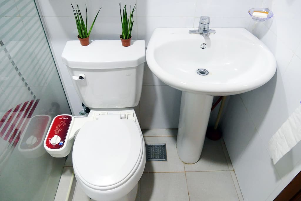 Toilet  1st floor (common space)