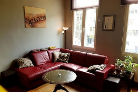 Charming Apartment in City Center - Antwerpen