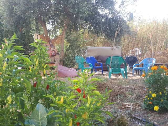 The Ecological Garden / On the Mesila/ Emek Refaim