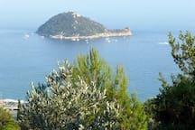 isola Gallinara vista da Alassio  ESCURSIONI