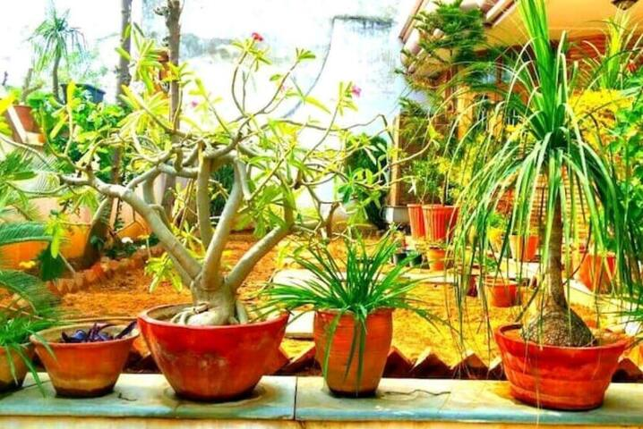 AC Room enSuite-II in Villa [JAMILAHOUSE]: Jaipur