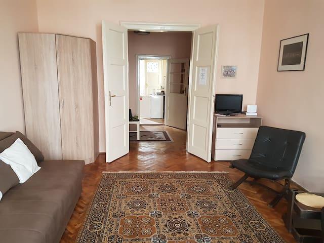 Apartment in center, 48m2, pets friendly,1st floor - Novi Sad - Lejlighed