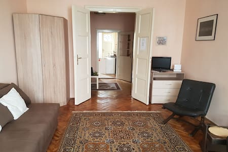 Apartment in center, 48m2, pets friendly,1st floor - Novi Sad