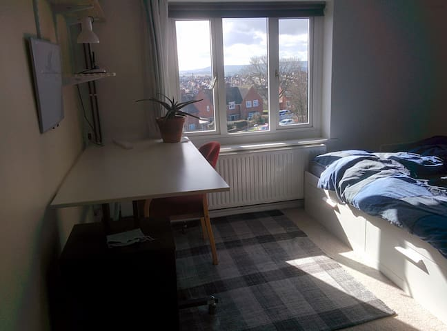 Sunny spacious double room near the uni
