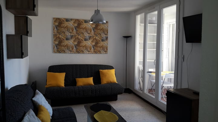 STUDIO CARNON,  parking privé, WIFI,  plage à 100M