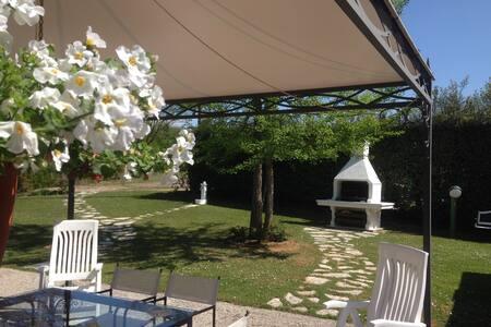 Villa Fior di Robinia - Giavera del Montello - B&B/民宿/ペンション
