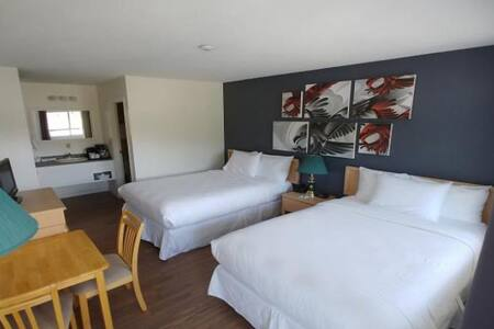 Two double beds, private bath, air conditioning, mini-fridge, free y bottled water, hairdryer, tv/dvd player, in room coffee & tea service, telephone & high speed wireless internet. Some pet friendly rooms available. Maximum number of adults is 4.