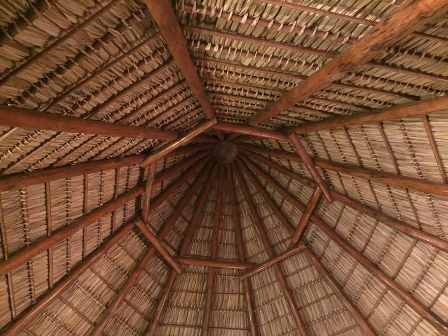 thatched hut roof detail