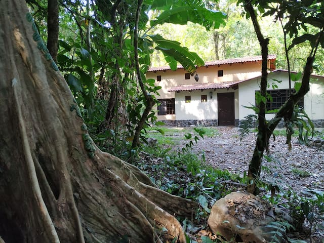 Family house with river view in primary rainforest