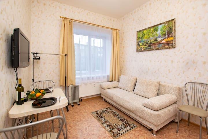 Уютная квартира студия у Карусели