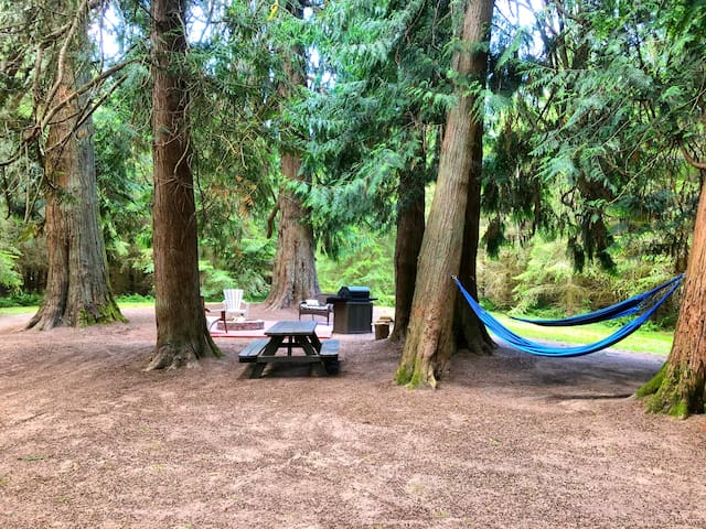 Glamping /Tent or RV Camping!