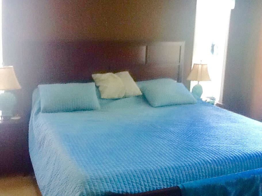 Master bedroom , king size with hot tub snd Two waking closets
