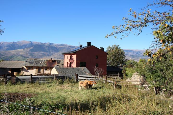 Eco-apartament pràctic i acollidor amb jardí a Das