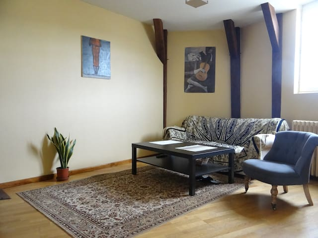 Apartment 2 rooms and a living 60m2 - Saumur - Appartement